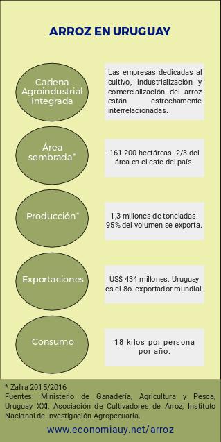 Infografía - Arroz en Uruguay - Producción, consumo y exportaciones.