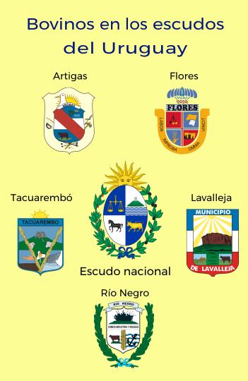 Bovinos en los escudos del Uruguay